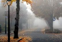 FOGGY & MISTY DAYS / by MARTHA BARCENAS