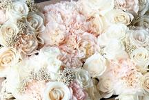 Everything Wedding / by Sinead