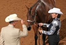 Horse tips and tricks. / by Alyssa Henry
