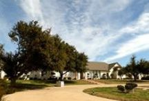 Cleburne Tx | Homes for sale / Home Searching in Cleburne? I will be posting new home listings as they come on the MLS - If you want to do your own searches go to www.reallivingrealestategroup.com / by Real Living Real Estate Group