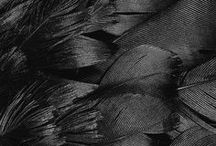 All Black, That White / by Karina K