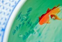 Natural Wonders [ Goldfish ] / by RDDZS