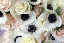 Floral design / by Sormeh Slater