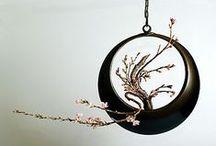 Ikebana / by Magnolia