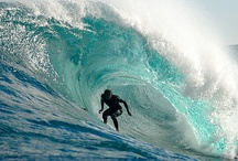 Surf / by Jennifer Tiberio