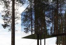 Tree Nests / by Nando Djurović