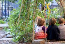 Eco kids / by Kim Davidson