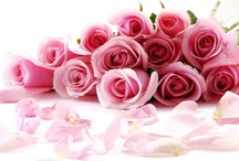 Roses / by Rita Anoffo