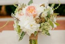 Wedding Bouquets / by Paisley Events