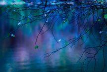 Feelin' Blue!!! / by Lea Zinke