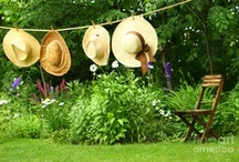ClothesLines / by S P