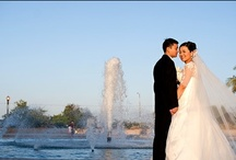 Weddings at the Fleet / Yes, you can have a wedding in a museum!  We offer competitive wedding packages for couples wanting to get married in historic Balboa Park! / by Reuben H. Fleet Science Center