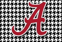 Roll Tide!!! / by mary bohr
