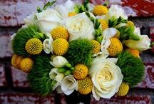 Yellow & Green Wedding / by Karen Cruse