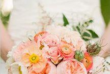 wedding ideas / by Dolly Hess