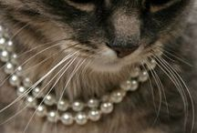 Dripping in Pearls / by keyser_sozed