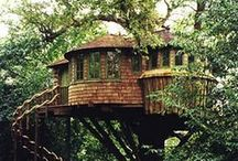 treehouses / by wendy Tisdale