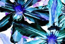 pattern / by Débora Costa