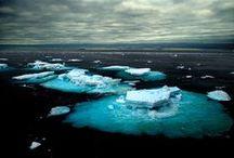 Arctic / by Jasna Pleho - Studio JASNA KRASNA