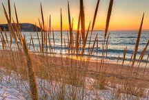 Sunrise & Sunset / The Sun  / by Rhonda Werling