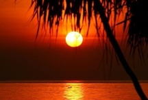 Sunrise - Sunset / by Lisa Meshenberg