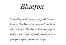 Bluefox / Saga Furs lookbook F/W 2013-14 / by Saga Furs