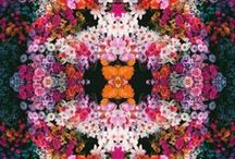 floral / by Anna Veneti