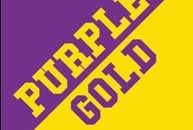 Purple & Gold / by IMC Sport Novelties