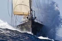 Sailing / by Jean-Michel Lovinfosse