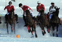 Polo on Snow / by Miguel XdE