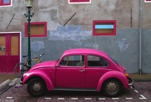 The Color Pink / I love pink! / by Lynette E.
