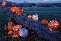 Halloween Pumpkins / Jack-O-Lanterns, Gourds, Pumpkins / by Debra Lynn