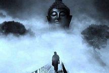 Buddha / by Rae Bowman