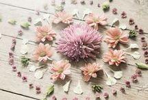 Everything Beautiful / by Banyan Botanicals