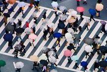 Japan / by Mad Katigan.