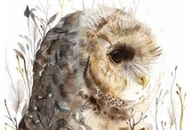 Hoot / by lisa poling