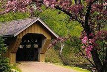 Covered Bridges / by Joyce Dowtin