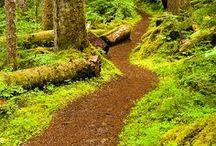 Pathways / by Joyce Dowtin