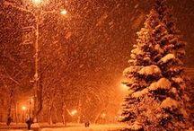 winter beauty / by Joyce Dowtin
