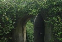 ~ secret garden / by clara t