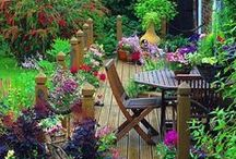 Garden & More / by lucy