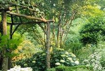 Garden decoration and ideas ❀ / by Priestess of the woods ❀