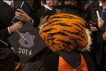 Alumni / by Auburn University