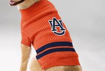 Treat your pet to Official Merchandise / by Auburn University