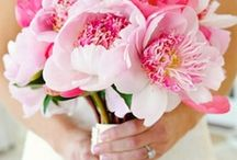 Plants and Florals / by Michelle // Elegance & Enchantment