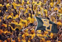 Baylor Bear / Once a bear, always a bear.  Forever a part of that good ol' Baylor Line / by Natalie Flores