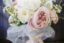 WEDDING / by Sasha Selden