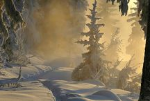 Snow and ice. Just breath taking! / I love snow & the amazing scenery it gives you.  / by Celia Bowen