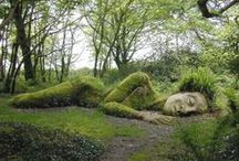 Old Gardens / by Sandy C