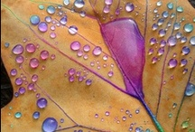 ⋱☂ Dew Drops & Rain  ☂ ⋱ / Please re-pin anything you like, as many as you like. I am not one of those selfish Pinners who wants to own all my pictures. I love to share and am happy to share my pins with anyone. / by Rêveuse Intemporelle